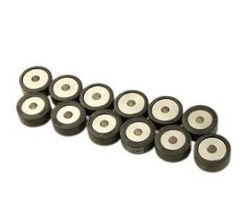 Galets de variateur Polini 25x11mm 9.6 G. (x12)
