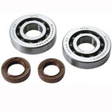 Kit roulements + Joints Spi Piaggio Typhoon - NRG - Stalker (Moteur Piaggio 50 2T)